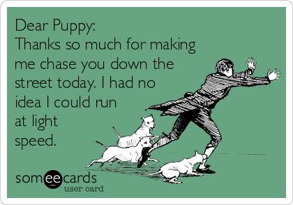 DearPuppy