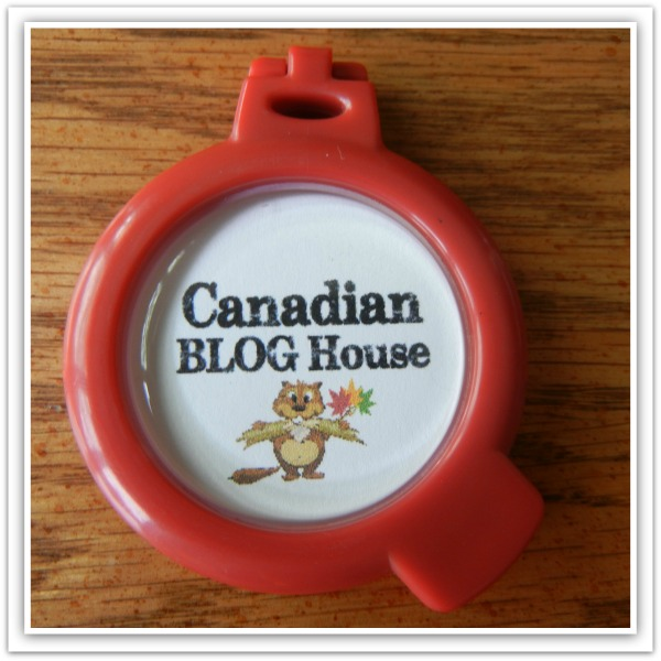 CanadianBlogHouseSwaggerTag