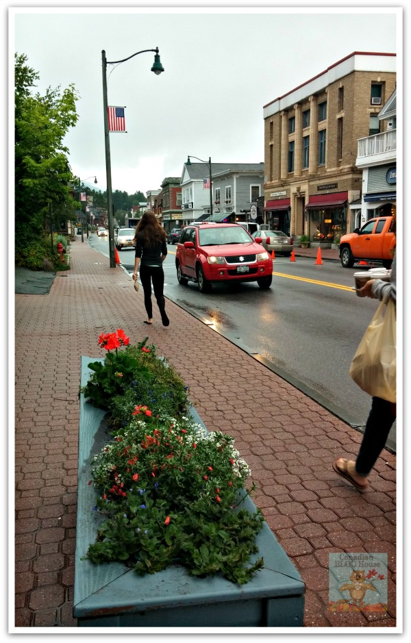 LakePlacidMainStreetFlowerPlanter