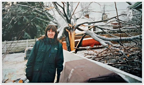 Ice Storm 1998 storm damage