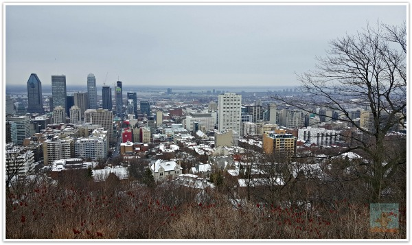 City of Montreal From Mount Royal