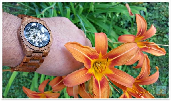 Dover Series Koa and Black JORD wood watch