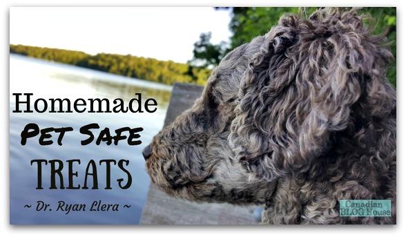 Homemade Pet Safe Treats