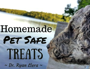 Homemade Pet Safe Treats