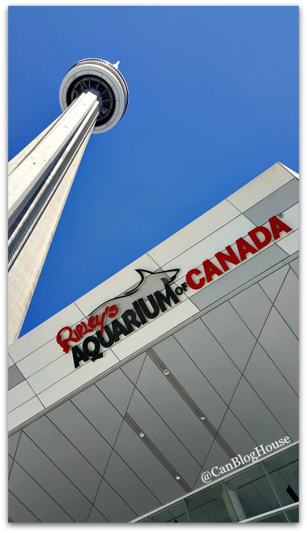 Ripley's Aquarium CN Tower