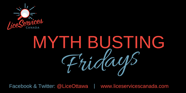 Lice Services Canada Lice myths about head lice Myth Busting Fridays