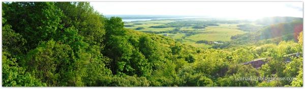 Gatineau Provincial Park Fujifilm FinePix XP120 Panorama