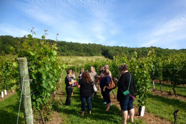 Breakaway Experiences Nova Scotia Wine Tour