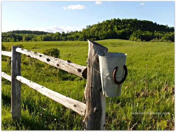 Farm Fence Western Quebec Fujifilm FinePix XP120