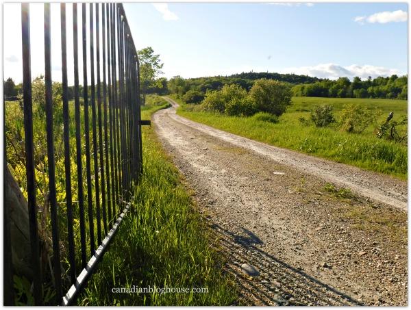 Country Farm Road Western Quebec Fujifilm FinePix XP120