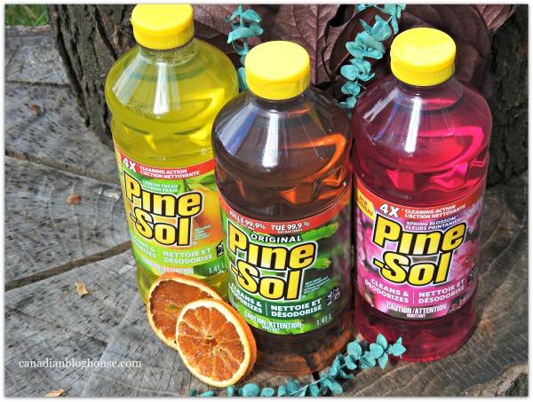 Pine-Sol Scent Memories