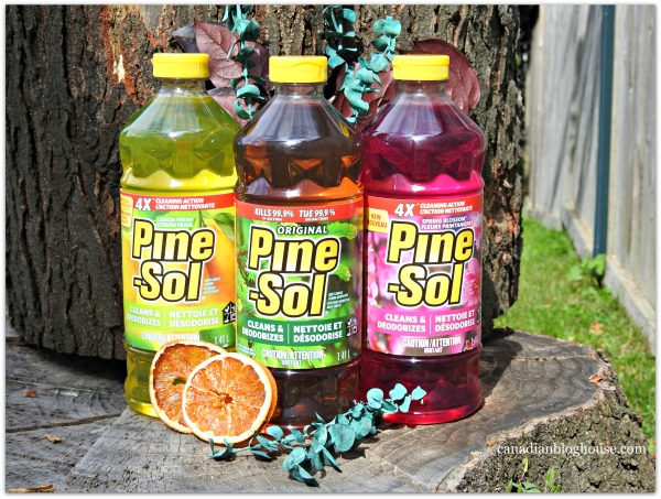 Pine-Sol® And Scent Memories Make Total Sense #YesitsPinesol