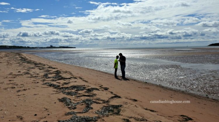 Things to love about Prince Edward Island Canada