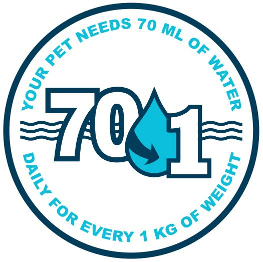 Your Pet Needs 70ml of water daily pet dehydration