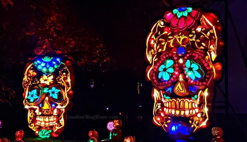 Pumpkinferno Handcrafted Pumpkins Skeleton heads