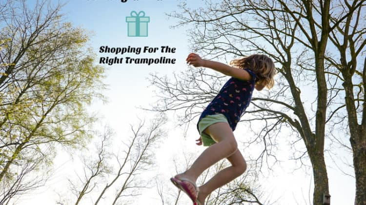 Holiday Gift Guide: Shopping For The Right Trampoline