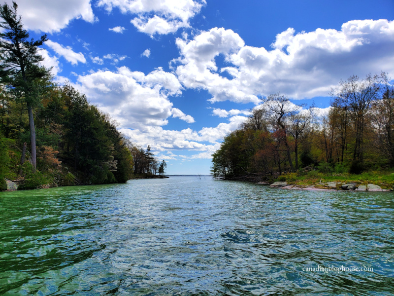 View of water between two islands in Thousand Islands National Park