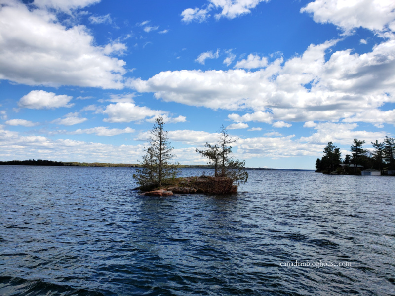 View of small island in the St. Lawrence River