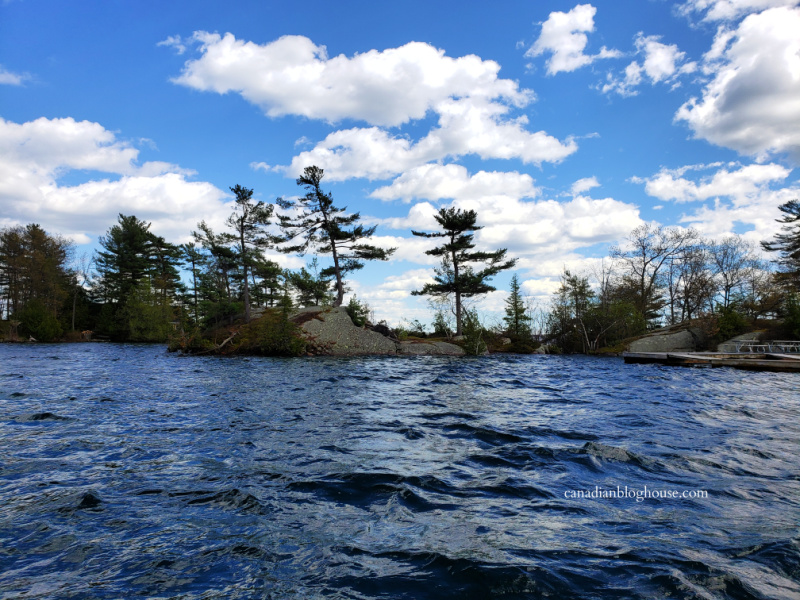 View of a tree-lined island in Thousand Islands National Park