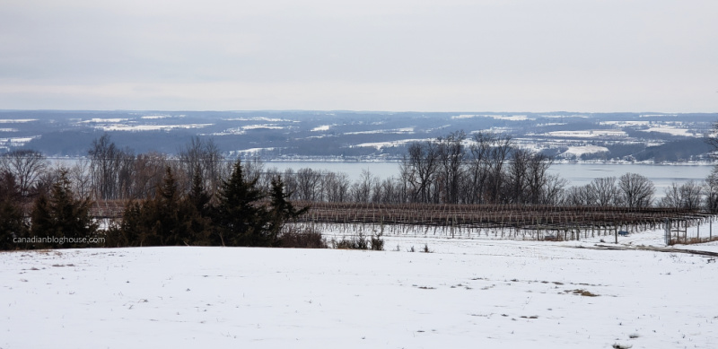 Tour Cayuga County Bright Leaf Winery