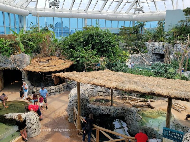 Texas State Aquarium in Corpus Christi Texas
