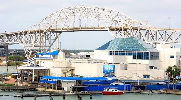 View of Harbor Bridge and Texas State Aquarium Family Fun on the Texas Gulf Coast