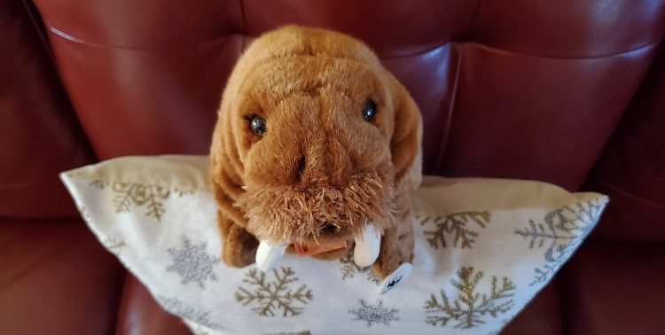 WWF-Canada gift with impact adoptable plushie walrus